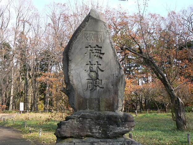 北海道神宮内記念碑P1020265