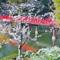 天王寺公園散歩