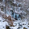 写真: 厳冬期のスッカン沢