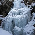 写真: 氷瀑の勇姿
