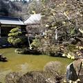 写真: 宝登山神社の庭園