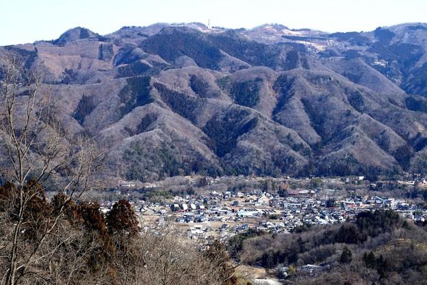 宝登山の風景1