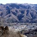 写真: 宝登山の風景1