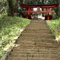 新府城跡への急な階段