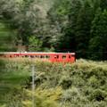 播担線の電車