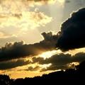 写真: 夕方の光線