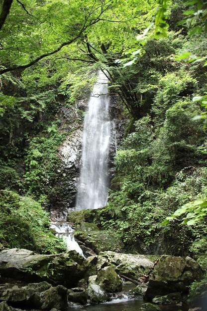 写真: 払沢(ほっさわ)の滝