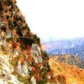 大観峰よりの紅葉風景2