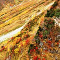 大観峰よりの紅葉風景11