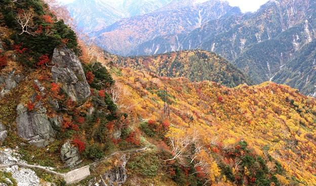 大観峰よりの紅葉風景15