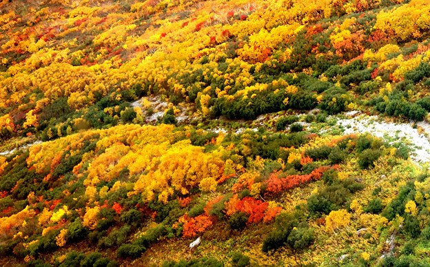 大観峰よりの紅葉風景17