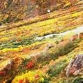 大観峰よりの紅葉風景18