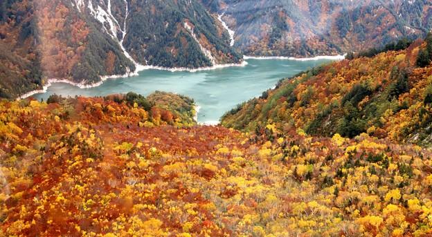 黒部湖の紅葉