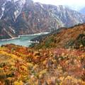 黒部湖の紅葉2