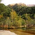 写真: 田代池風景