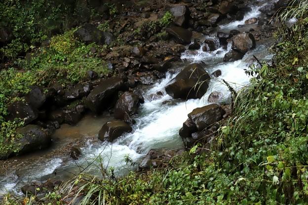 大田切渓谷の沢の流れ