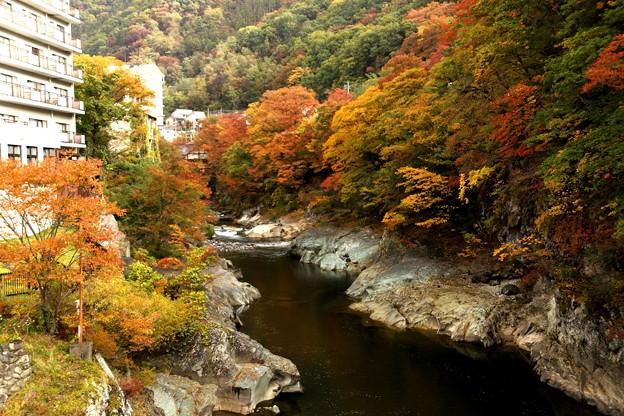 諏訪峡の紅葉2