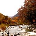 湯桧曽川の紅葉4