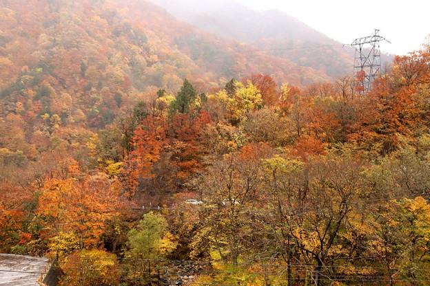 天神平ロープウエイ乗場からの紅葉風景