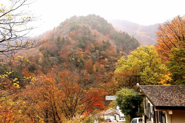一ノ倉沢への登り始め紅葉風景
