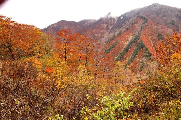 マチガ沢より見える紅葉風景2