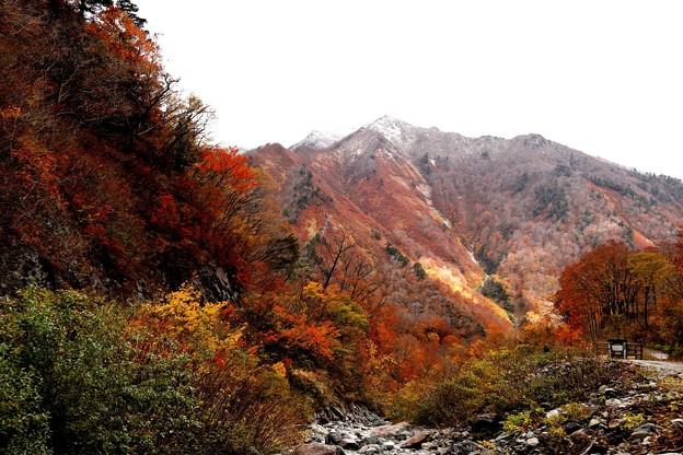 一ノ倉沢の対面の紅葉