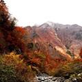 写真: 一ノ倉沢の対面の紅葉