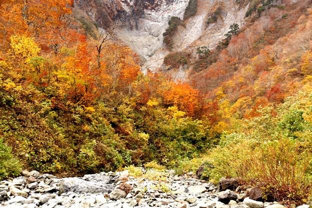 紅葉と雪渓