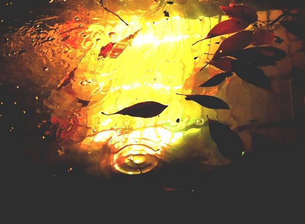 写真: 水と彩光のアート1