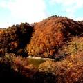 写真: 奥利根の紅葉1
