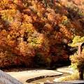写真: 奥利根の紅葉2