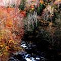 晩秋の照葉峡の風景