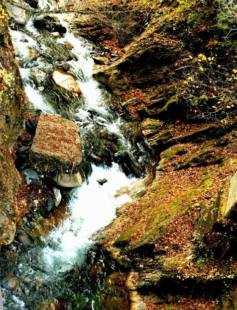 秋の照葉峡の渓流