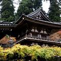 大雄山の寺院