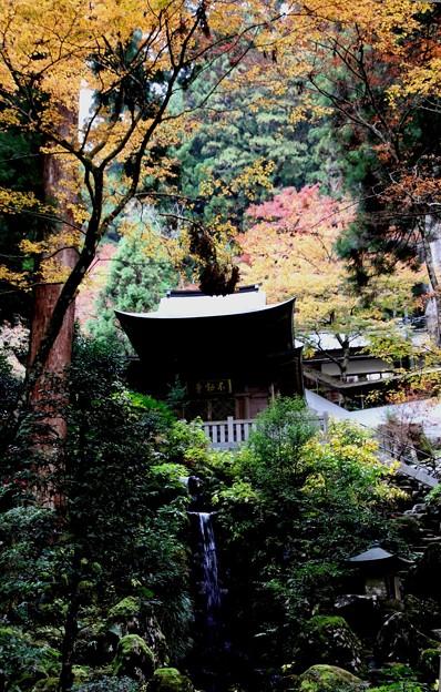 大雄山の寺院4