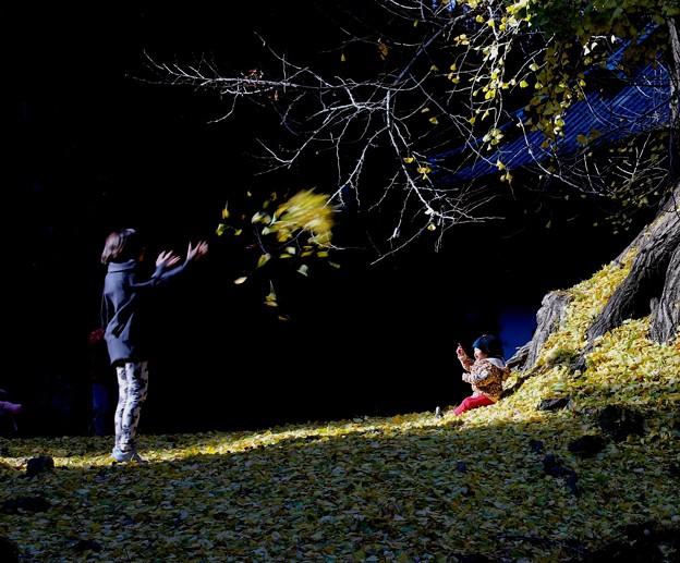 落葉で遊ぶ親子
