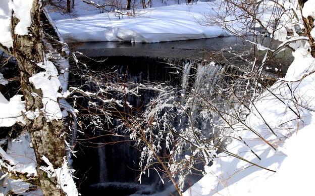 氷結した木々と滝