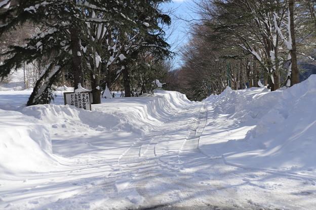 土合雪景色2