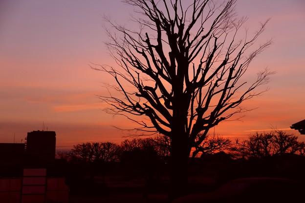 日の出前 朝焼け