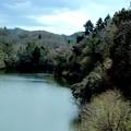 春の湖風景