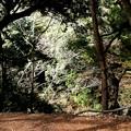 濃溝の滝への風景