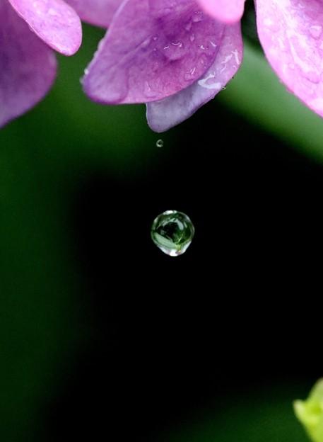 落下する雫玉への反映