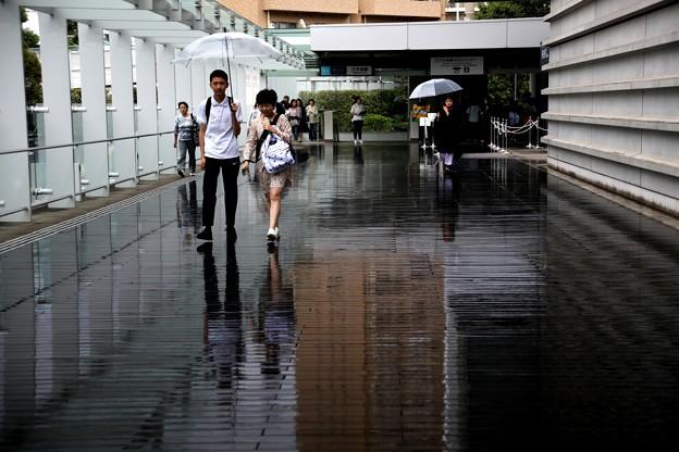 雨の日の国立新美術館風景3