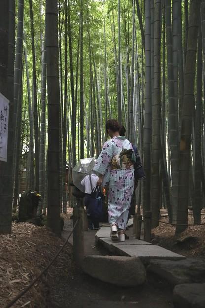 報国寺竹の参道2