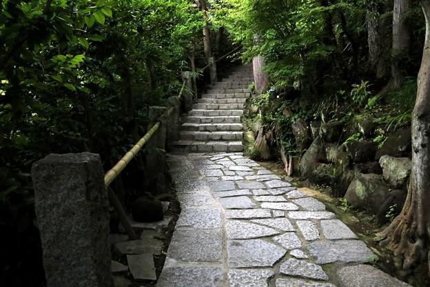 杉本寺の本堂への参道