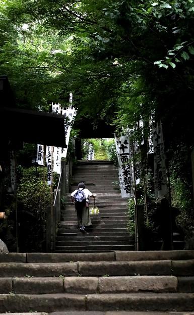 杉本寺の石段