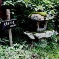 Photos: 三千院への道