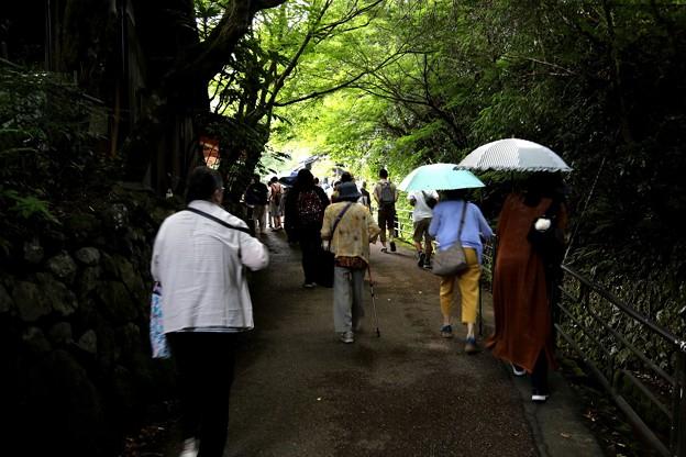 Photos: 三千院への道2
