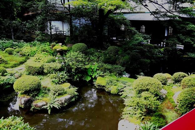 三千院庭園