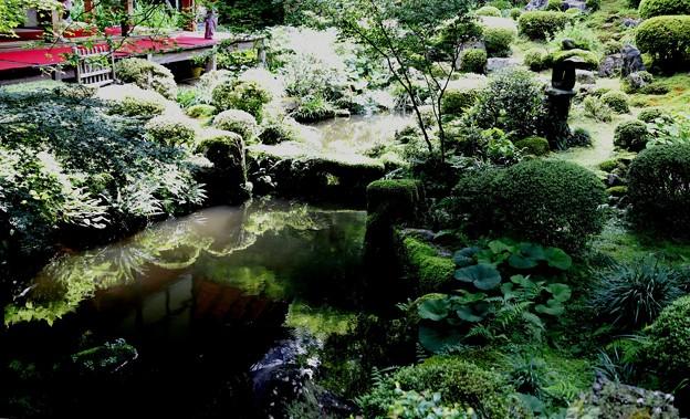 三千院 部屋から眺める庭園3